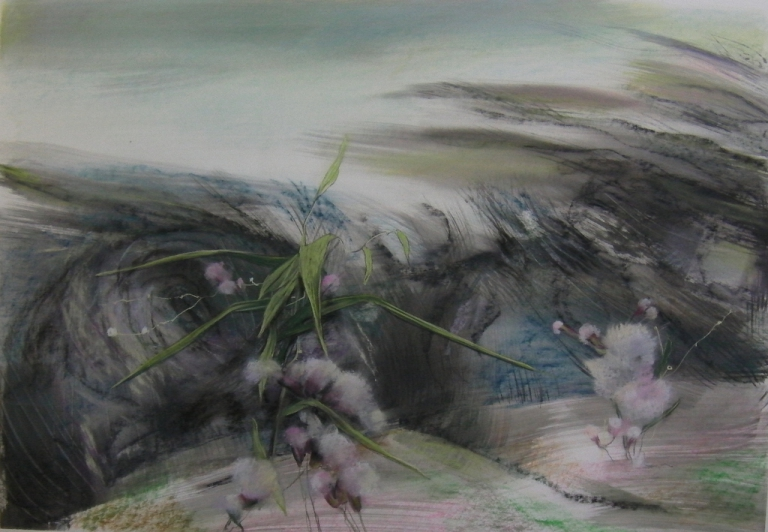 Pink sea-weeds, the waters of Venice serie, 70 x 100cm, 2018