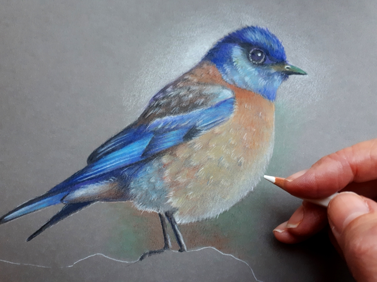 Bluebird work in progress, 2018